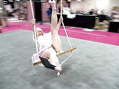 Exxotica Adult Expo Avant-garde Jersey -No Undershorts Zoe Zane